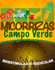 micorrizas hongos del suelo