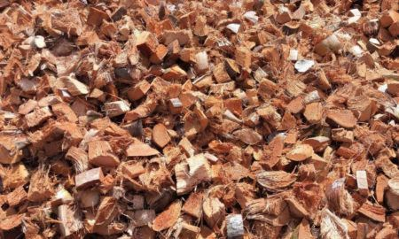 subproductos coco chip