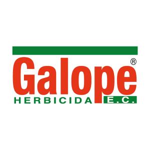 Herbicida selectivo galope