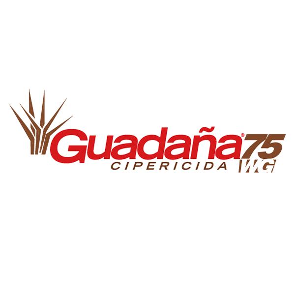 HERBICIDA CIPERICIDA HALOSULFURON METIL GUADAÑA 75 WP