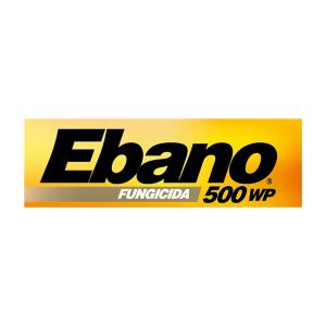 FUNGICIDA QUÍMICO EBANO 500 WP