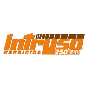 INTRUSO 250 EC