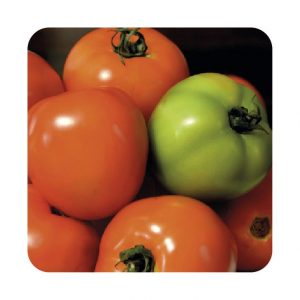 Semilla Tomate Chonto Calima