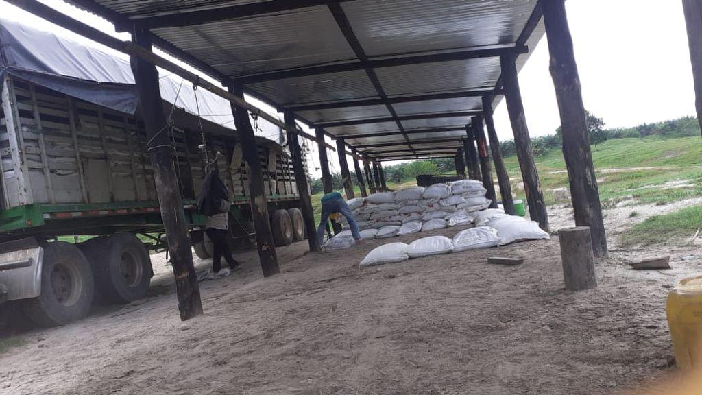 Descargue-de-Tractomula-con-Yeso-Agrícola-en-plantación-de-Palma